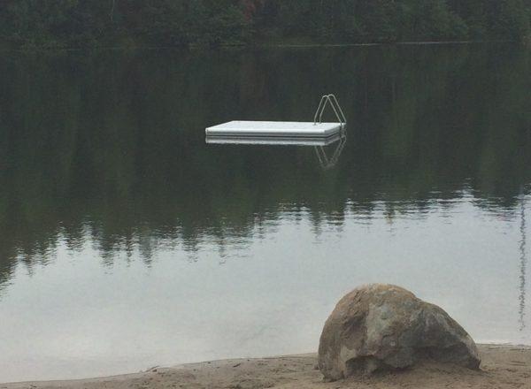 Badflotten på plats i Långsjön