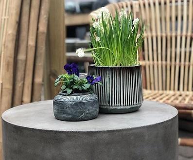 Våren i antågande – Björknäs trädgård öppnar